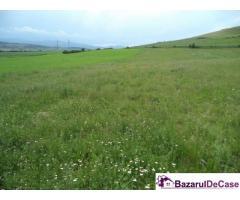 Vanzare teren de 900mp extravilan in zona Centurii Donath  Floresti