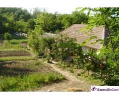Casă și teren - Suceveni-Valea Viilor