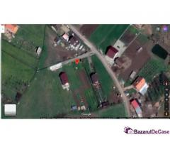 Teren pentru constructie 1000 mp I Zona Hamba-Sura Mare