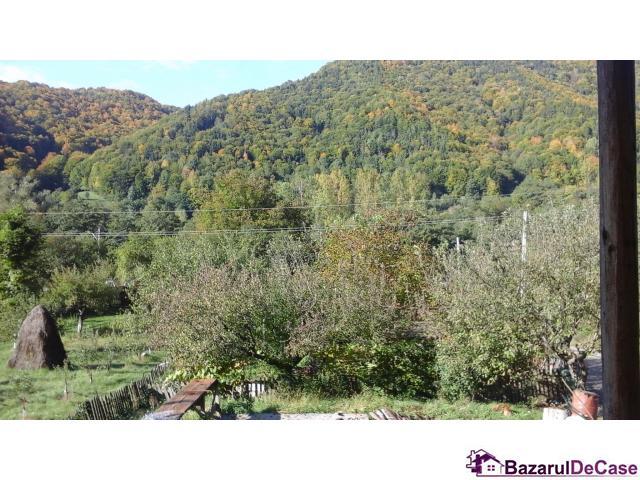 casa vila Arges munte pensiune zona turistica proprietar - 3/5