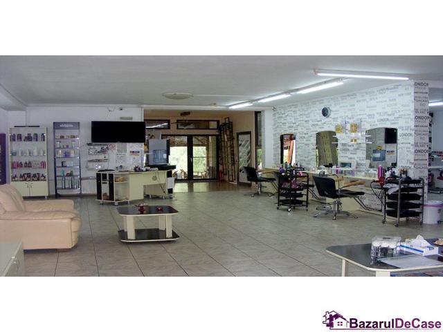 Casa-vila si afacere de vanzare Strada Paraul Rece Popesti Leordeni - 12/12
