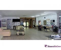 Casa-vila si afacere de vanzare Strada Paraul Rece Popesti Leordeni - Imagine 12/12