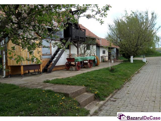 Casa - vila de vanzare Găneasa Ilfov - 9/12